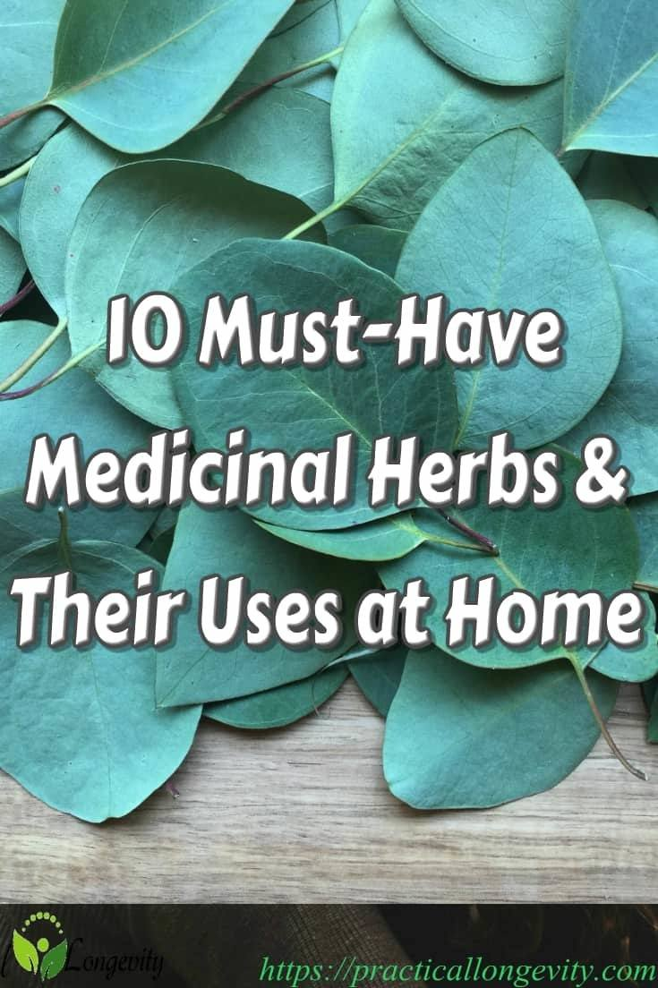 There are a number of medicinal herbs and spices you should have on hand as a natural first aid kit for life's little health issues. Here are 10 useful ones that will cover a range of conditions:  Aloe Vera, Ginger, Valerian, Chamomile, Turmeric, Garlic, Ginseng, Milk Thistle, Nettle, Willow Bark