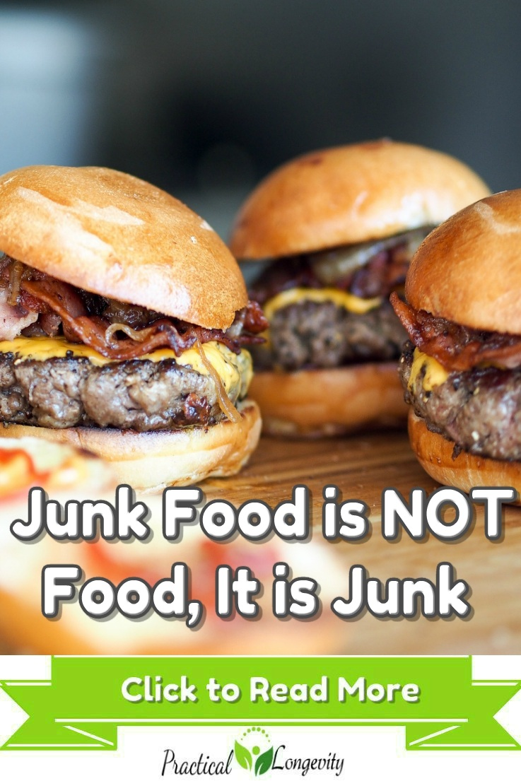 Junk Food is NOT Food, It is Junk