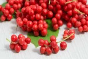 Anti-depresion herbs Schisandra Ultimate Superberry
