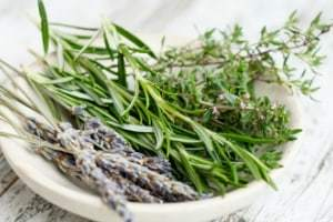 medicinal herbs and their uses herbs used for healing Rosemary