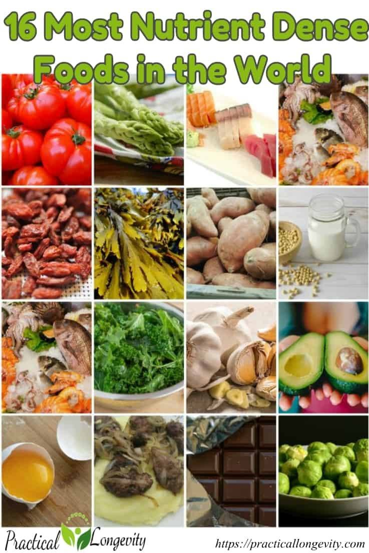 16 Most Nutrient Dense Foods in the World