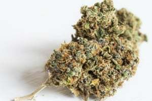 Discoveries Of Medical Marijuana Healing Properties