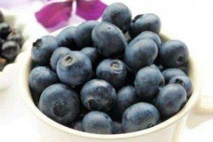 Do blueberries improve brain function?