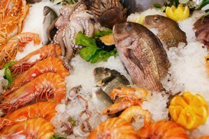 Shellfish best nutrient dense foo din the world