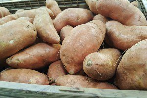 Sweet Potatoes most nutrien dense food