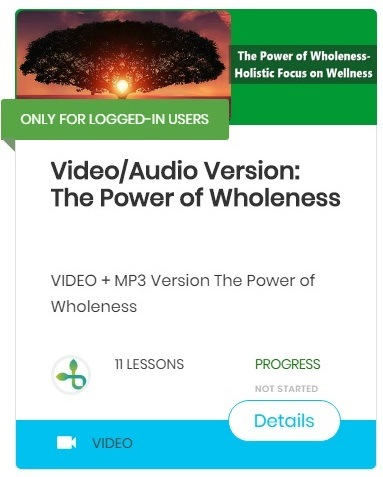 The Power of Wholeness-Holistic Focus on Wellness-course video