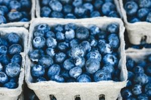 blueberries the most nutrient dense foods in the world