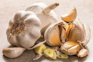garlic the most nutrient dense foods in the world