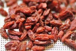 goji-berry the most nutrient dense foods in the world