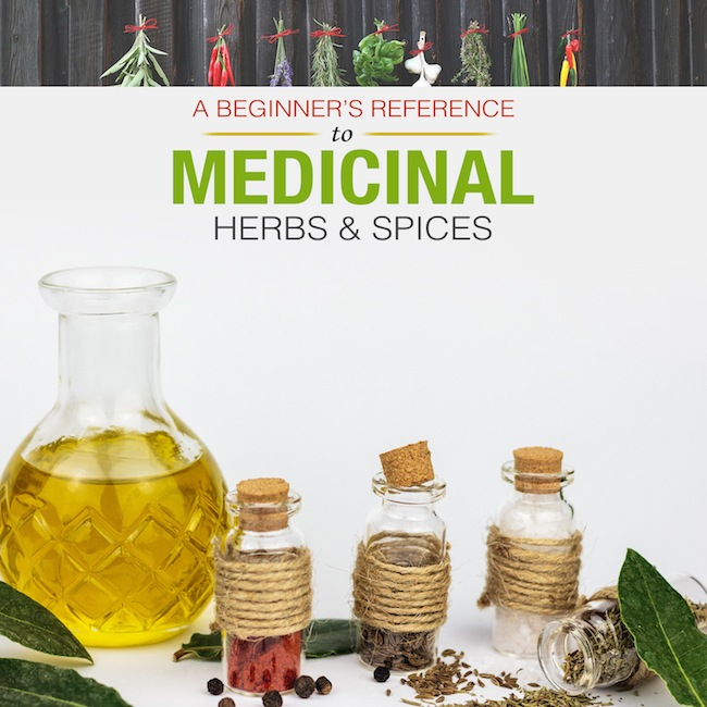 A Beginners Reference to Medicinal Herbs & Spices