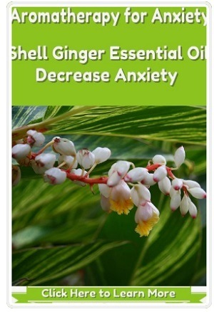 Shell Ginger Essential Oil Decrease Anxiety Symptoms