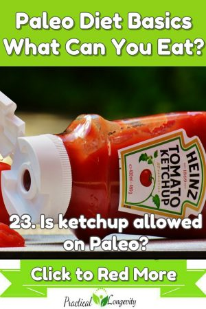 53 Tips for Eating Paleo-Is ketchup allowed on Paleo