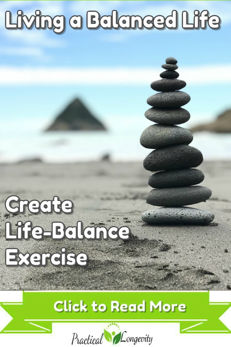Successful people try to maintain a balance between health, family, social, financial, business, civic and spiritual elements to live a healthy and fulfilling life. A poor life balance will have a negative impact on our mental, physical, social, and emotional health if we fail to be vigilant in securing our life balance.