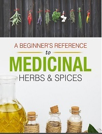 A Beginner's Reference to Medicinal Herbs & Spices