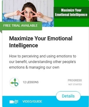 Maximize Your Emotional Intelligence-course
