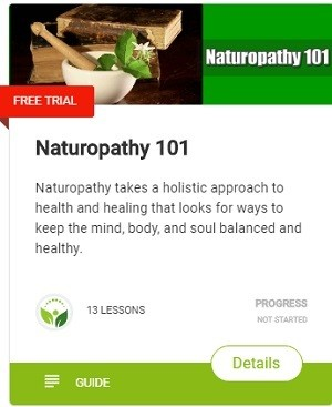 Naturopathy takes a holistic approach to health and healing that looks for ways to keep the mind, body, and soul balanced and healthy